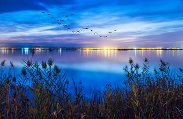 paisaje de una noche en el lago