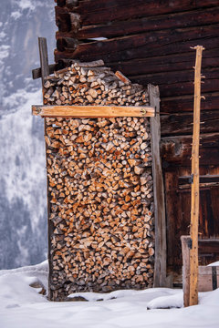 piling wood for the winter