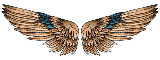 Beautiful spreaded hand drawn eagle brown wings with turquoise feathers, vector