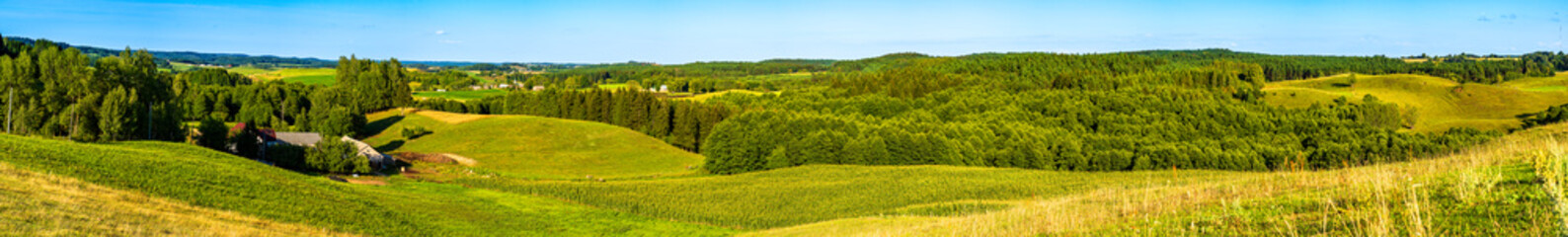 Fotobehang Pistache Panoramic view of the undulating landscape with meadow and trees in autumn colors.