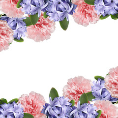 Fototapete - Beautiful flower background of carnation and hyacinth. Isolated