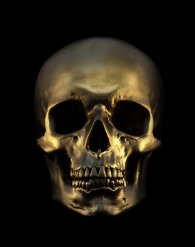 Gold Skull Isolated