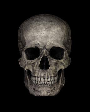 Human Skull Isolated on black