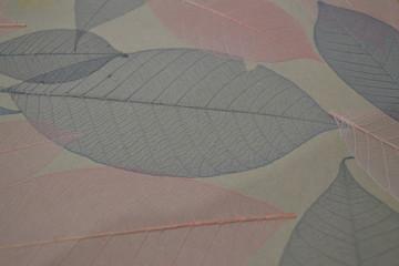 Keuken foto achterwand Texturen background textured design herb color