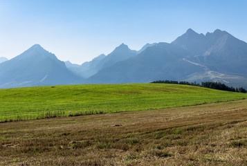 rural landscape of slovakia in summer. empty wheat field in august. high tatras mountain ridge in the distance. sunny weather with clouds on the sky