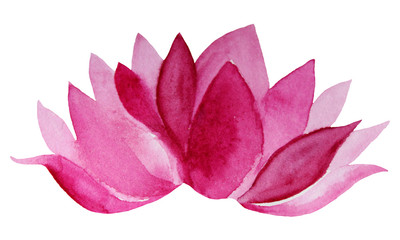 Watercolor hand-drawn pink flower lotus isolated on white background