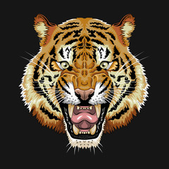 Tiger face vector graphic clipart design