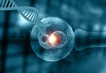Vitro Fertilization. IVF with DNA strand. 3d illustration.