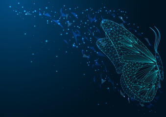 Futuristic web banner with beautiful glowing low polygonal sitting butterfly
