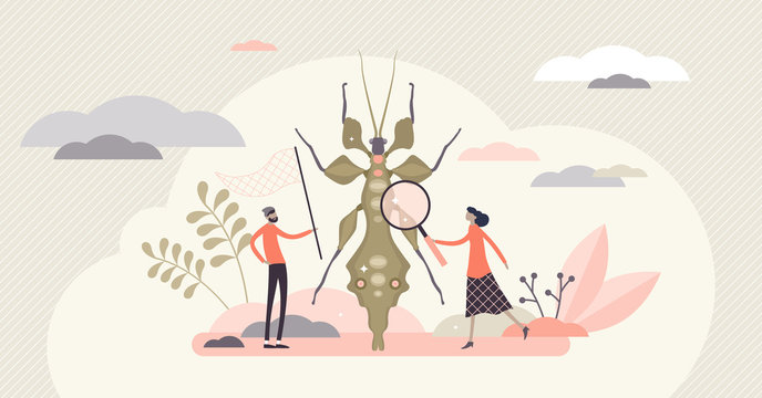 Entomology field concept, flat tiny person entomologists vector illustration