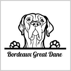 dog head, Bordeaux Great Dane breed, black and white illustration