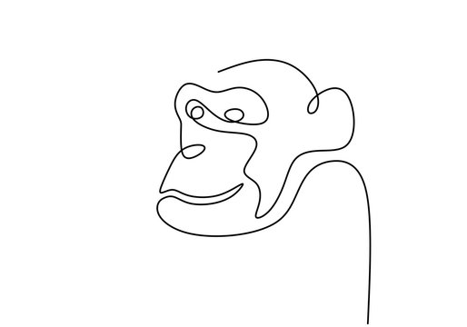 One line monkey animal. Continuous drawing single hand drawn of ape. Portrait minimalism vector illustration isolated on white background.