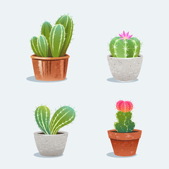 Set of four cactus in flower pot. Home plants. Vector Illustration