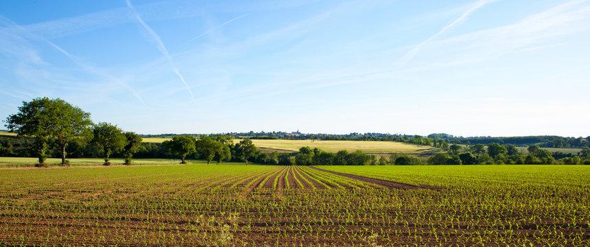 Panorama dans les champs, campagne Française, France.