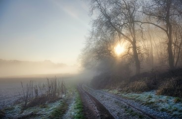 Farm track in winter, Cotswolds, England