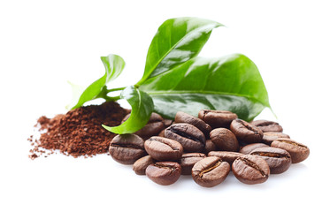 Poster de jardin Café en grains Coffee beans with leaf on white