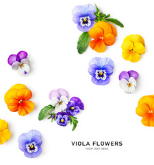Spring viola pansy flowers composition