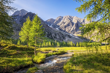 Small river flowing in the alpine valley Gradental in Carinthia south of Grossglockner, Austrian Alps Wall mural