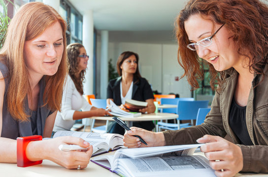Female students learning in a team at a sunny university surrounding