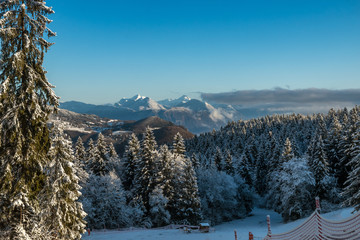 Paysage d' hiver , en montagne , massif de la Chartreuse , Col de Marcieu
