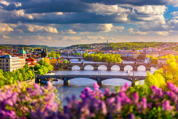 Aluminium Prints Prague Scenic view of the Old Town pier architecture and Charles Bridge over Vltava river in Prague, Czech Republic. Prague iconic Charles Bridge (Karluv Most) and Old Town Bridge Tower at sunset, Czechia.