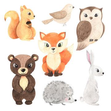 Cute cartoon watercolor forest animals set