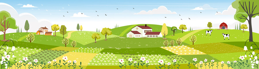 Tuinposter Lime groen Rural farm landscape with green fields, farm house, barn, animals cow, blue sky and clouds, Vector cartoon Spring or Summer landscape, Panoramic countryside landscape