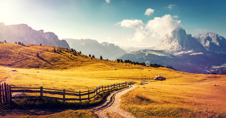 Fotomurales - Wonderful Alpine valley in Dolomite Alps. Beautiful view of idyllic alpine mountain scenery with blooming meadows and majestic mountain peaks on a beautiful sunny. Val Gardena. Dolomimes mountains