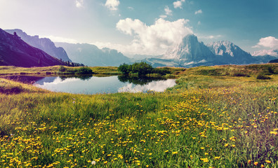 Fotomurales - Wonderful Nature Landscape. Spring landscape at sunny day. perfect countryside scenery with blue sky and blooming hillside, clear lake. Val Gardena. Dolomites Alps. Italy. Travel Lifestyle concept.