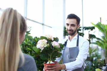Fond de hotte en verre imprimé Hortensia Beard Gardener Holding Hydrangea in Flowerpot. Handsome Man Florist Giving White Hortensia in Pot to Blonde Girl. Worker in Apron Present Blooming Plant with Green Leaves at Botanic Shop.