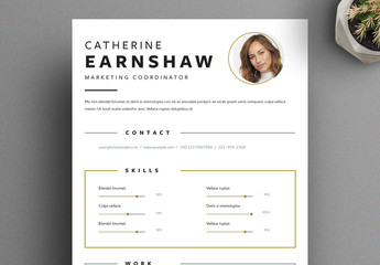 Resume Layout with Frame Elements and Gold Accents