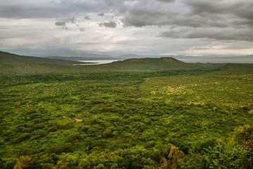 Panoramic view to Mago National Park at Omo valley, Etiopia
