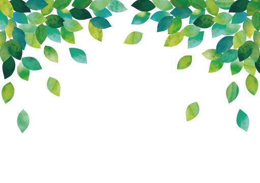 葉っぱ水彩フレーム