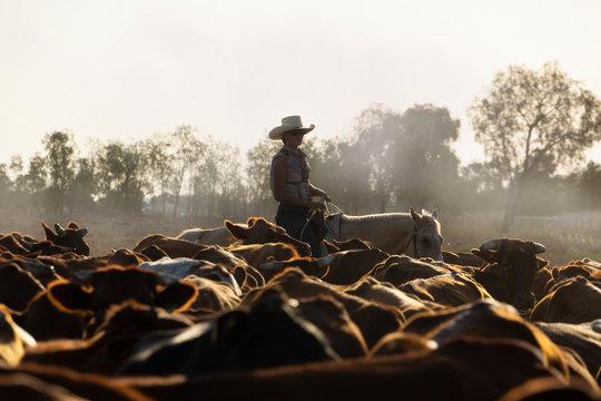 Female drover herding cattle.