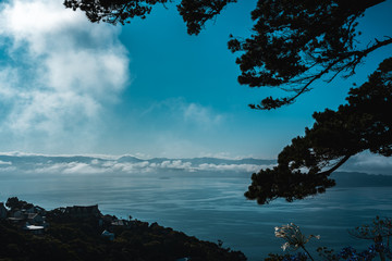Fotomurales - Wellington in a foggy morning, New Zealand
