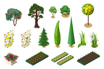 Set isometric of plants for garden. Trees, flower beds and vegetable beds
