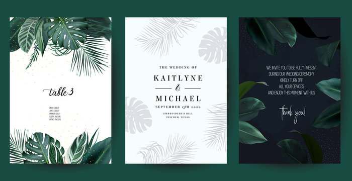 Tropical frames arranged from exotic emerald leaves