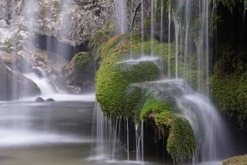 Foto op Aluminium Khaki natura