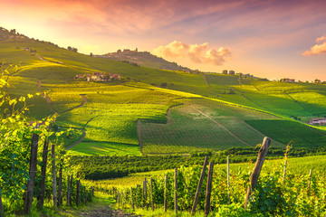 Wall Murals Vineyard Langhe vineyards view, Barolo and La Morra, Piedmont, Italy Europe.