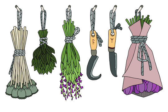Hand drawn vector element. Illustration for magic, aroma ceremony & herbal medicine. Colorful  image. Bunch of dried herbs. Occult & Wicca