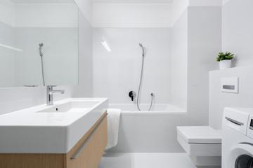 Stylish bathroom with big washbasin