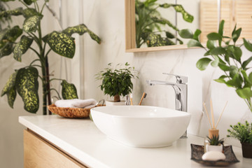 Vessel sink and green plants in stylish bathroom. Interior design