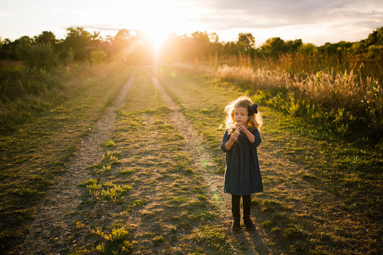 Young girl in a dress picking wildflowers outdoors