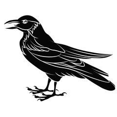 Black raven stands with an open beak, croaks