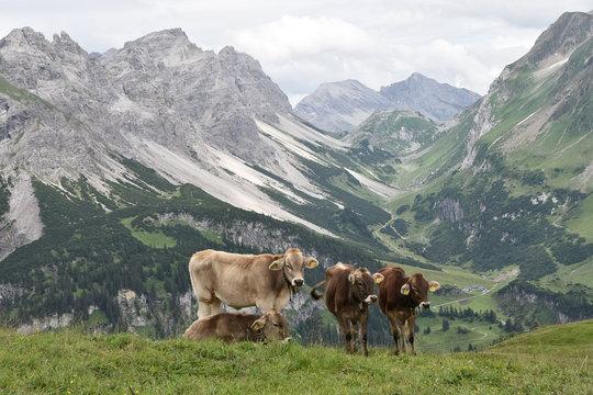 Berglandschaft in Vorarlberg