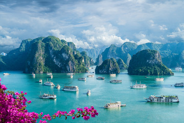 Wall Mural - Landscape with amazing Halong bay, Vietnam