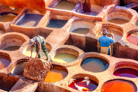 Leather dying in a traditional tannery in the city Fes, Morocco
