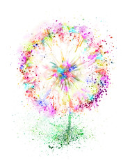 Spring flower dandelion. Watercolor floral hand drawn illustration. Blooming colorful dandelion isolated.