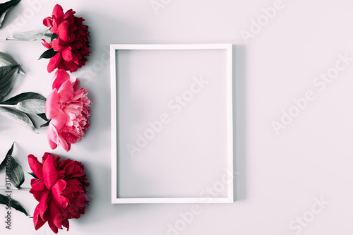 Beautiful flowers composition. Blank frame for text, pink and white peonies flowers on white background. Valentines Day, Easter, Birthday, Mother's day. Flat lay, top view, copy space