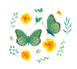 set green tropical butterfly with red spots watercolor on a white background
